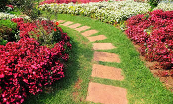 Landscaping in Chicago STATE% Landscaping Services in  Chicago STATE% Landscapers in  Chicago STATE%